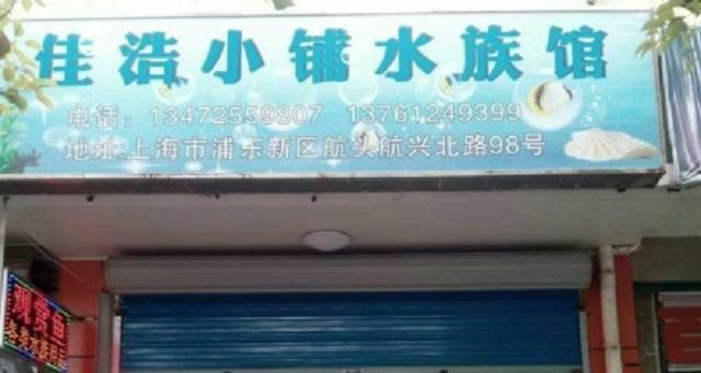 佳浩小铺水族馆