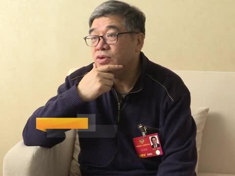 """朱永新委员:做好""""非遗""""保护要推进职业传承"""