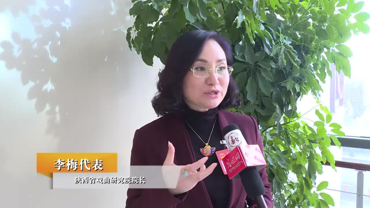 李梅代表:活态传承是对戏曲文化最好的保护