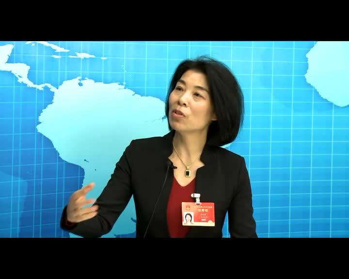 袁利群代表:建议国家加大汇率市场化力度