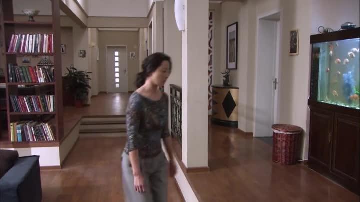 《你是我的亲人》刘震对莎莎说明自己的身世