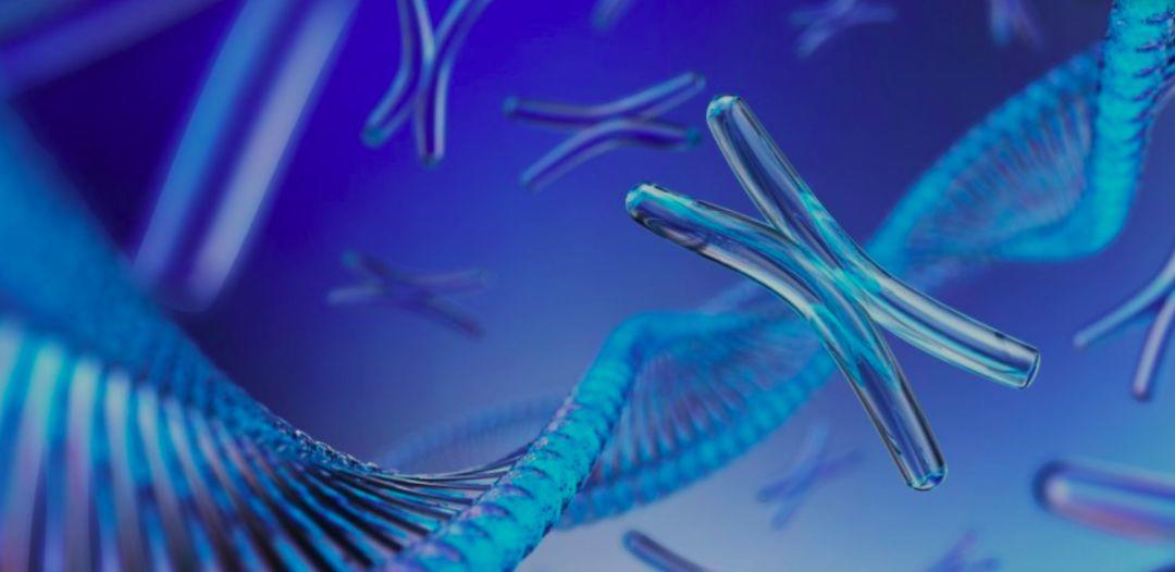 AI揭秘基因密码,告诉你为什么瘦不下来!