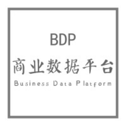 BDP商业数据分析平台图片