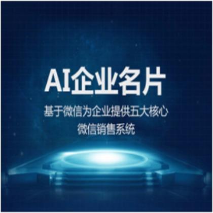 AI企业名片(系统搭建+服务费+帐号费)图片