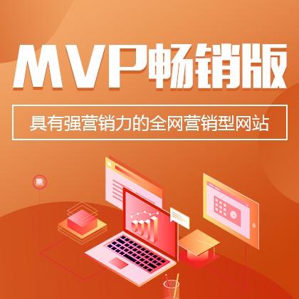 MVP全网营销型网站(畅销版)图片