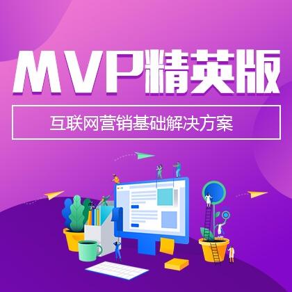MVP全网营销型网站(精英版)图片